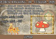 PREDIKSI TOGEL HONGKONG HARI MINGGU 09 FEBRUARY 2020