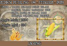 PREDIKSI TOGEL PETALING HARI MINGGU 09 FEBRUARY 2020