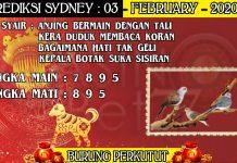 PREDIKSI TOGEL SYDNEY HARI SENIN 03 FEBRUARY 2020