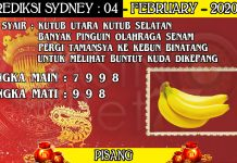 PREDIKSI TOGEL SYDNEY HARI SELASA 04 FEBRUARY 2020