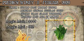 PREDIKSI TOGEL SYDNEY HARI SELASA 11 FEBRUARY 2020