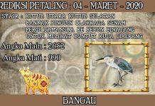 PREDIKSI TOGEL PETALING HARI RABU 04 MARET 2020