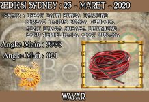 PREDIKSI TOGEL SYDNEY HARI SENIN 23 MARET 2020