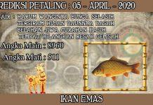 PREDIKSI TOGEL PETALING HARI MINGGU 05 APRIL 2020