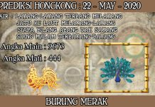 PREDIKSI TOGEL HONGKONG HARI JUMAT 22 MAY 2020