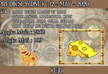 PREDIKSI TOGEL SYDNEY HARI SELASA 12 MAY 2020