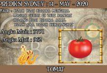 PREDIKSI TOGEL SYDNEY HARI KAMIS 14 MAY 2020