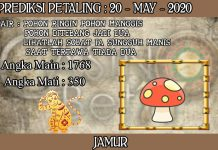 PREDIKSI TOGEL PETALING HARI RABU 20 MAY 2020