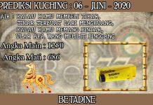 PREDIKSI TOGEL KUCHING HARI SABTU 06 JUNI 2020