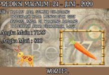 PREDIKSI TOGEL MAGNUM4D HARI RABU 24 JUNI 2020
