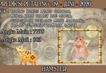 PREDIKSI TOGEL PETALING HARI JUMAT 19 JUNI 2020