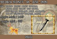 PREDIKSI TOGEL SYDNEY HARI SENIN 08 JUNI 2020