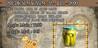PREDIKSI TOGEL MAGNUM4D HARI MINGGU 12 JULI 2020