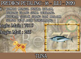 PREDIKSI TOGEL PETALING HARI KAMIS 16 JULI 2020