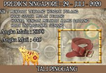 PREDIKSI TOGEL SINGAPORE HARI RABU 29 JULI 2020