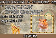 PREDIKSI TOGEL HONGKONG HARI MINGGU 13 SEPTEMBER 2020
