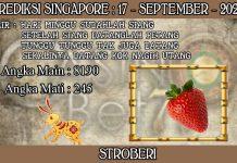 PREDIKSI TOGEL SINGAPORE HARI KAMIS 17 SEPTEMBER 2020