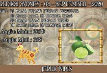 PREDIKSI TOGEL SYDNEY HARI JUMAT 04 SEPTEMBER 2020