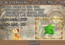 PREDIKSI TOGEL HONGKONG HARI SELASA 15 SEPTEMBER 2020