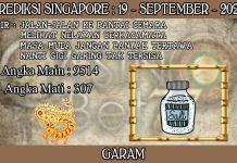 PREDIKSI TOGEL SINGAPORE HARI SABTU 19 SEPTEMBER 2020