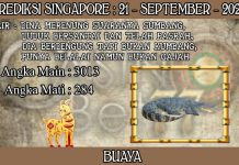 PREDIKSI TOGEL SINGAPORE HARI SENIN 21 SEPTEMBER 2020