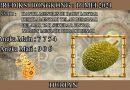 PREDIKSI TOGEL HONGKONG HARI MINGGU 16 MEI 2021