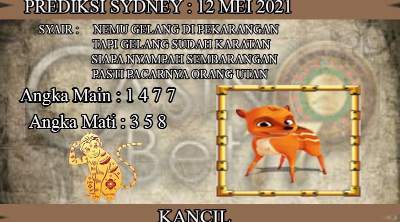 PREDIKSI TOGEL SYDNEY HARI RABU 12 MEI 2021