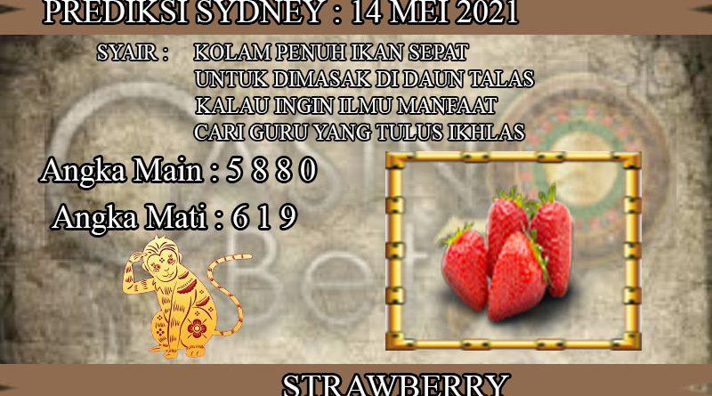 PREDIKSI TOGEL SYDNEY HARI JUMAT 14 MEI 2021