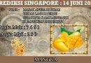PREDIKSI TOGEL SINGAPORE HARI SENIN 14 JUNI 2021